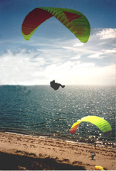 A beautiful Cape Cod afternoon - a glider in the air and one on the beach (55097 bytes)